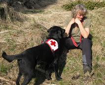 Flächensuche und Erste Hilfe Hund-Ausbildung