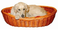 Hundekorb aus Weide