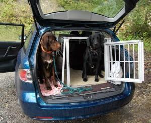 Reise-Hundebox für den Kofferraum